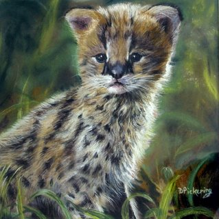 gallery/Members_Paintings/Dorothy-Pickering/Young_Serval_Pastel.jpg