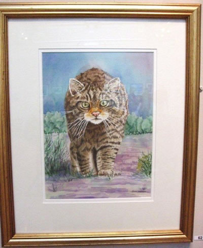 gallery/Members_Paintings/Jean_Webster/Highland_Wild_Cat_wcolour_90aa.jpg